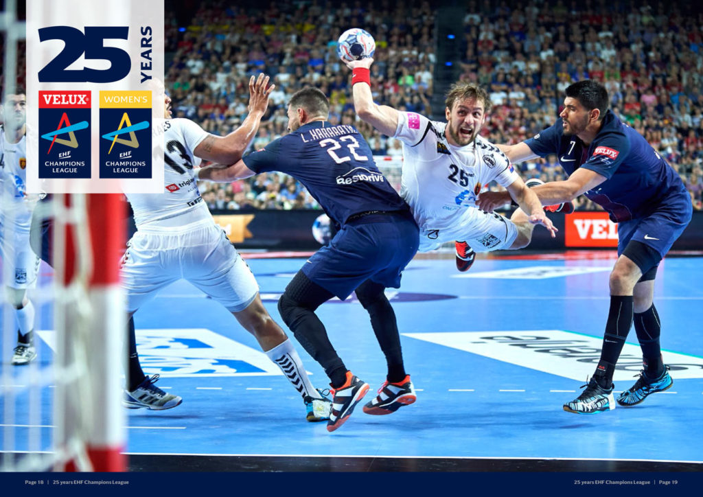 ehf-annual-report-2017-ehf25years