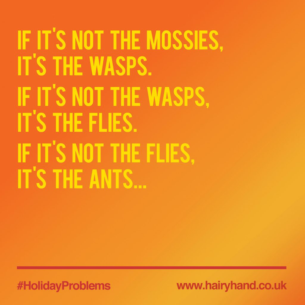 holidayproblems-insects-1080x1080