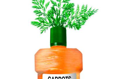 OneMinuteBrief Carrots response Hairyhand